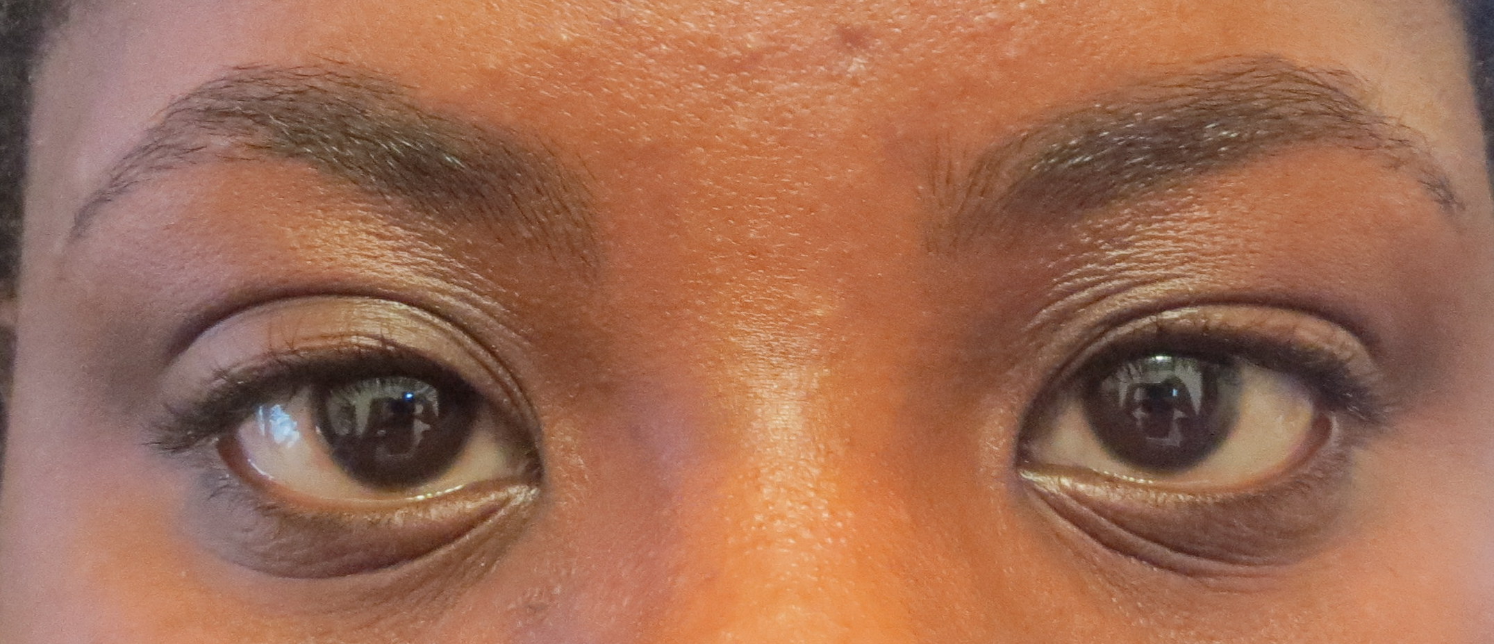 First Impressionsreview Maybelline Brow Drama Sculpting Brow Mascara